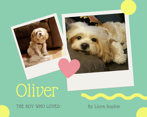 Cover of Oliver, the Boy who Loved